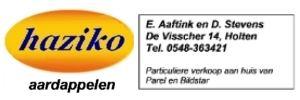 Haziko - Subsponsor BC Holten